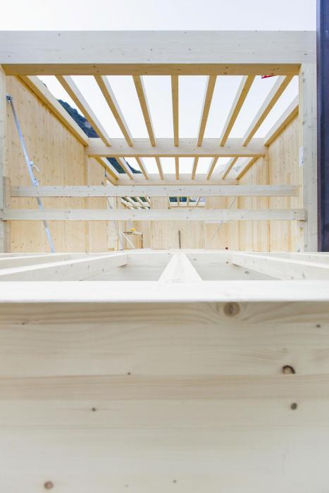 Struttura portante in legno